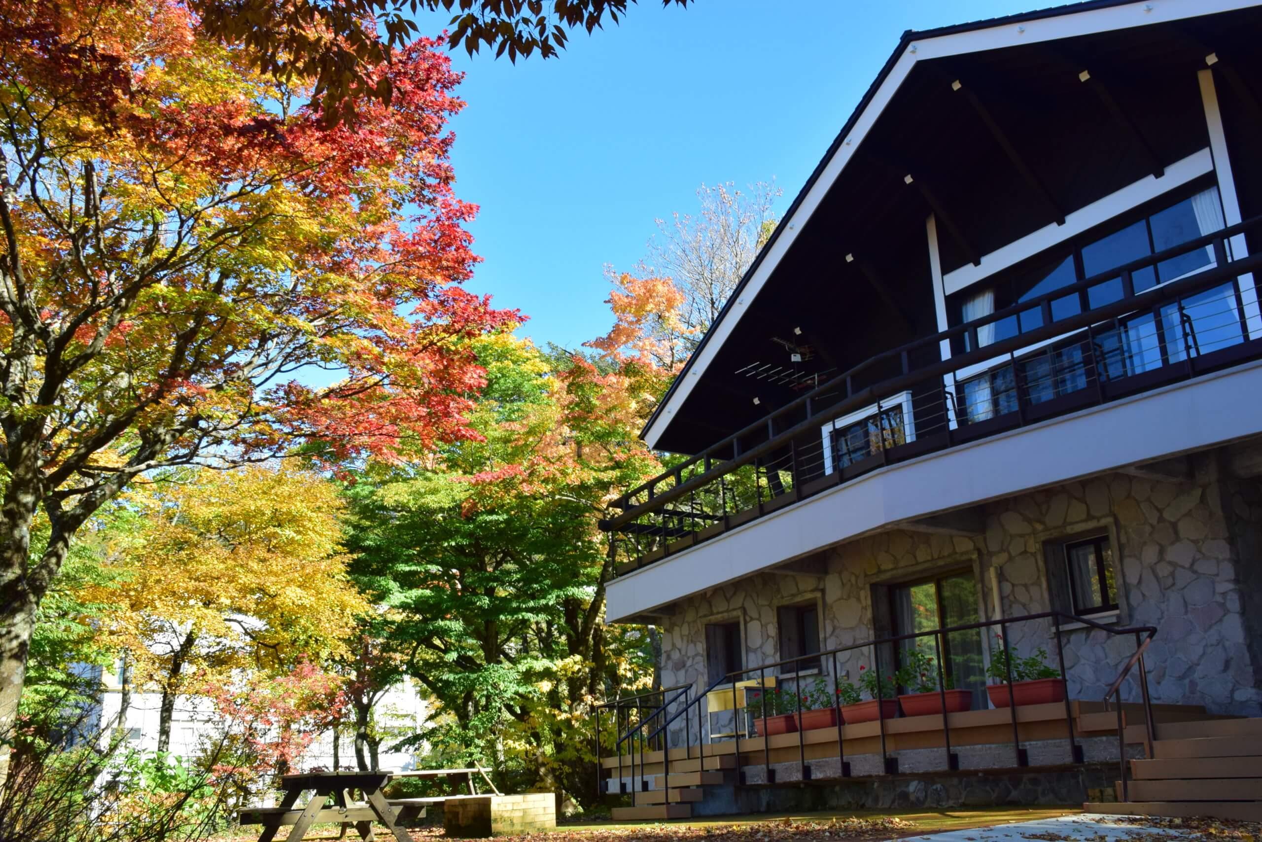 11/14(土)大人気【コテージ大山】空きがございます!